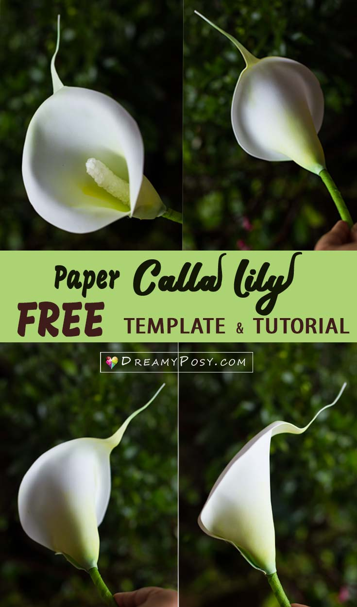 How To Make Paper Calla Lily Flower Free Template