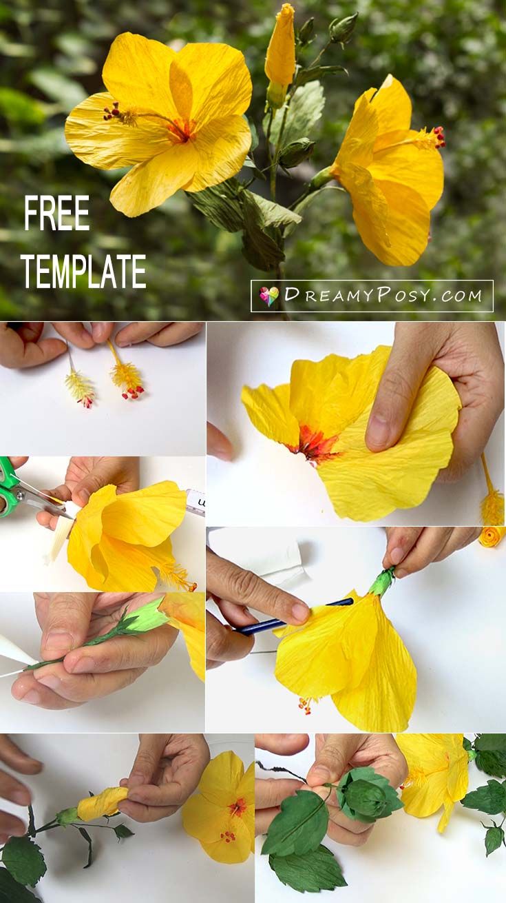 How to make hibiscus paper flower with free templates easy to follow hibiscus paper flower paper flower template and tutorial free template and tutorial izmirmasajfo