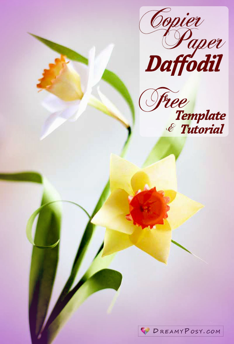 paper daffodil, paper flower, free tutorial, free template