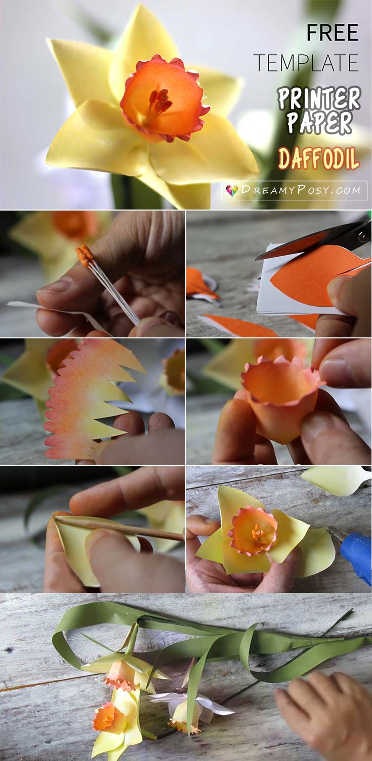Paper Daffodil full tutorial with free template, paper flowers tutorial