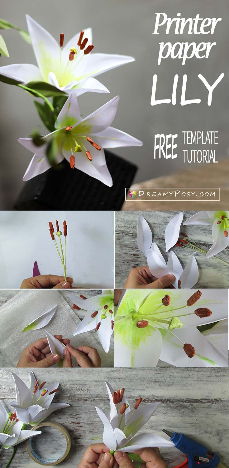How To Make Paper Lily Flower From Printer Paper Free Template