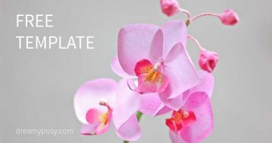 paper orchid, paper flower, free template