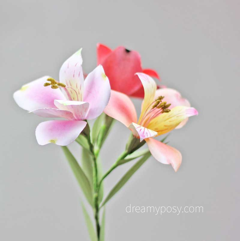 How To Make Peruvian Lily Paper Flower Free Template So Easy