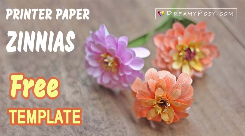 Paper Zinnias, free tutorial and template, made from printer paper, paper flower making