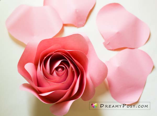 Giant rose free template and tutorial #paperflowers #flowertemplates #flowertutorials