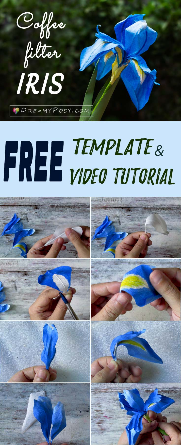 how to make paper iris flower  free template and full video