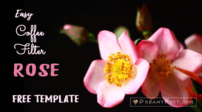 Coffee filter rose, free template and tutorial, so easy