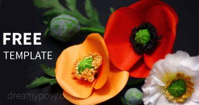 paper poppy, paper flower, free template