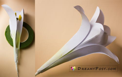 How to make paper Easter Lily flower, free template