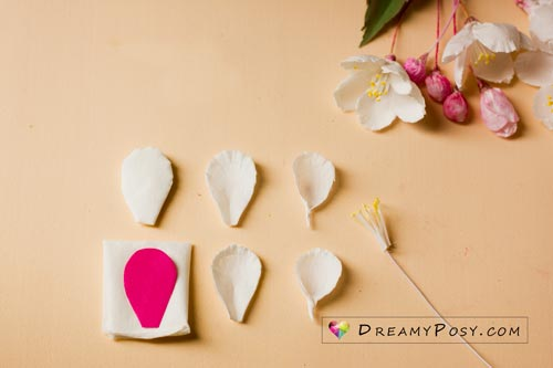 Paper apple blossom tutorial with free template, made from facial tissue #paperflower #flowertemplate #flowertutorial