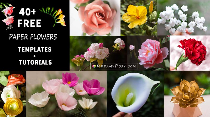 40+ Paper flowers tutorial with step by step, free templates #paperflowers #flowertemplates #flowermaking