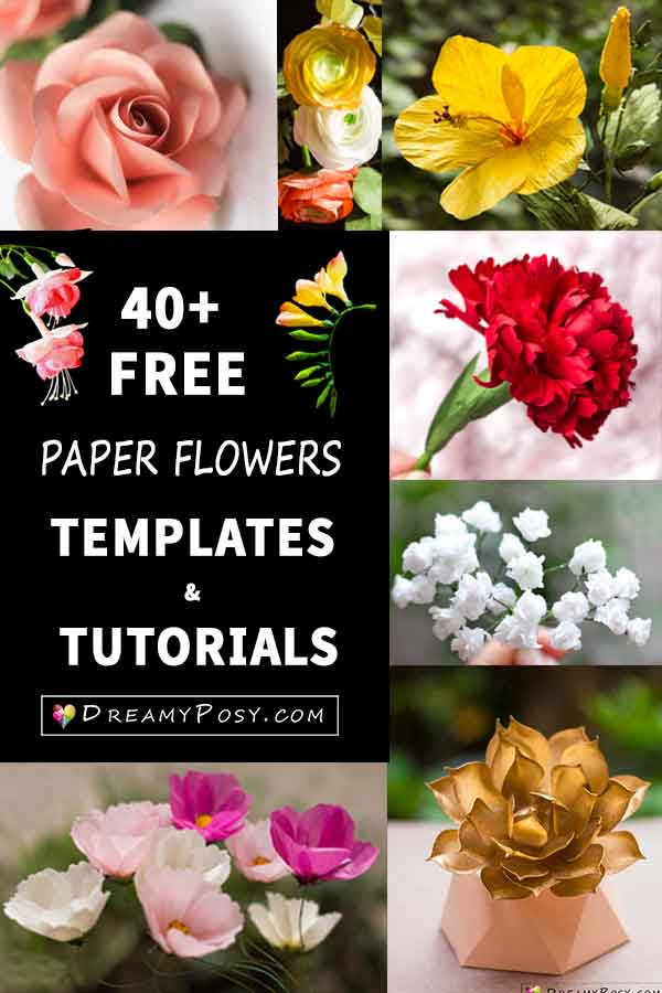 Paper flowers, free templates and step by step tutorials #paperflowers #flowertemplates #flowermaking #flowertutorials