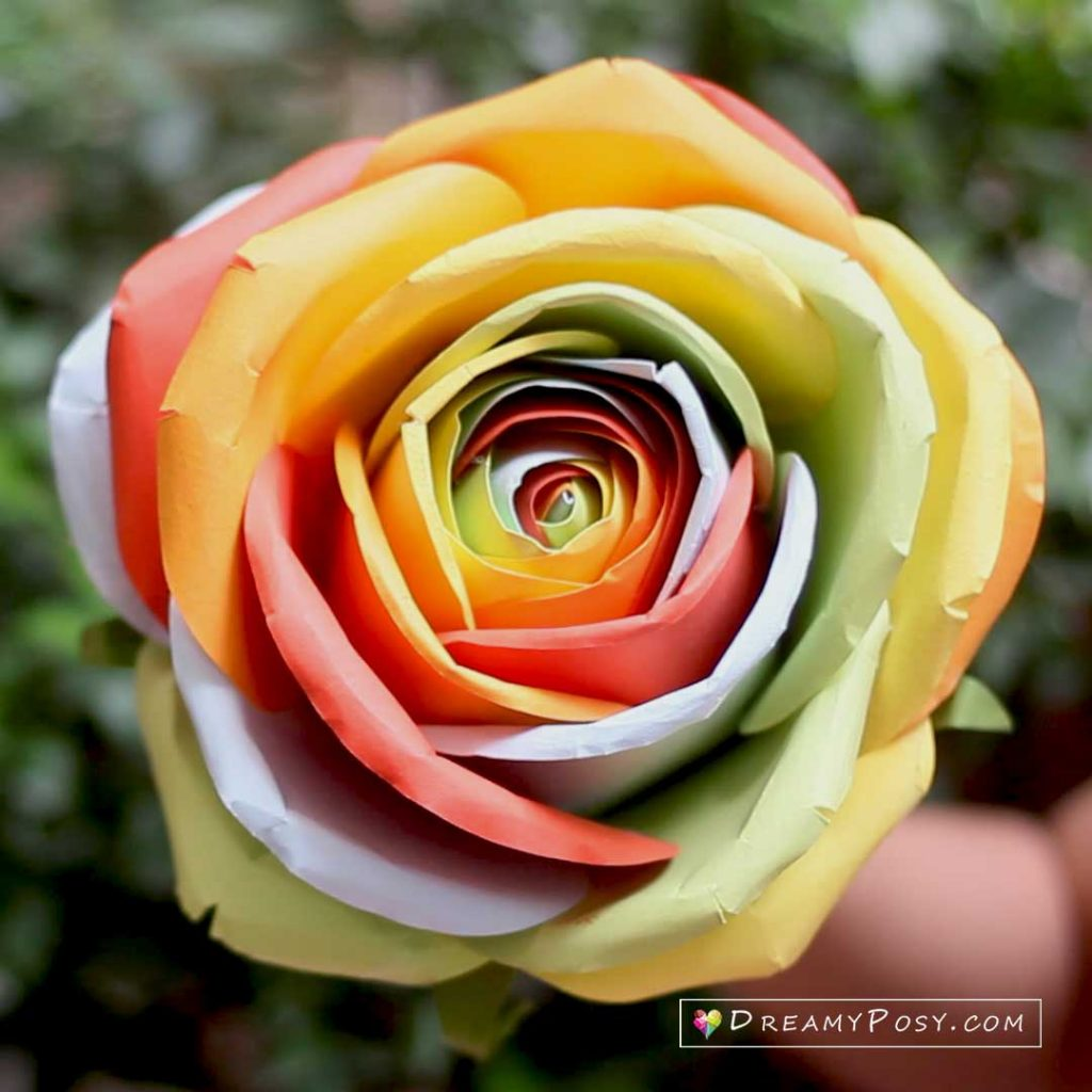 Large rainbow rose tutorial