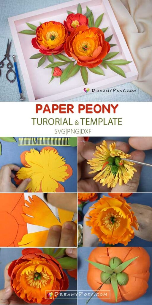 Coral charm peony paper flower tutorial step by step